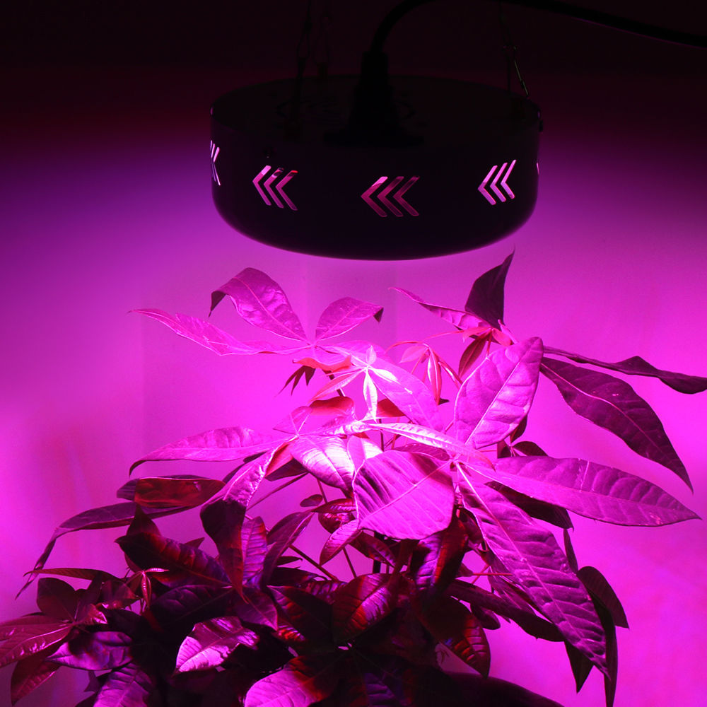 1pcs full spectrum led aquarium ufo 150w hydroponic systems cree 1pcs full spectrum led aquarium ufo 150w hydroponic systems cree led grow light indoor grow tent box lamp for plant flowers lamp in led grow lights from parisarafo Image collections