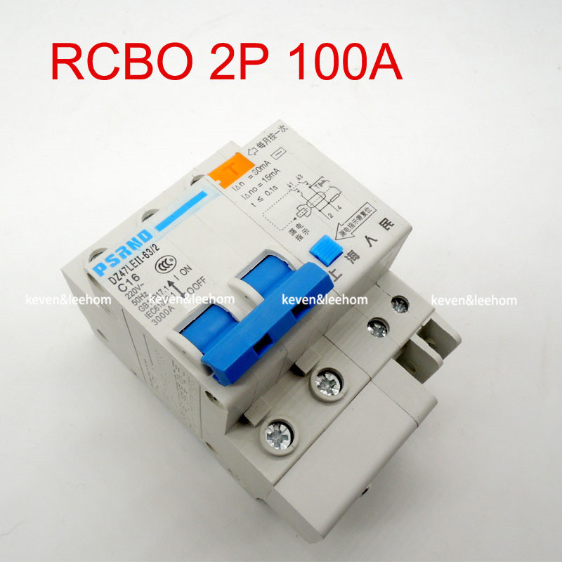 DZ47LE 2P 100A 220 380V Small earth leakage circuit breaker DZ47LE-100A Household leakage protector switch RCBO dz47le 4p 100a 220 380v small earth leakage circuit breaker dz47le 100a household leakage protector switch rcbo