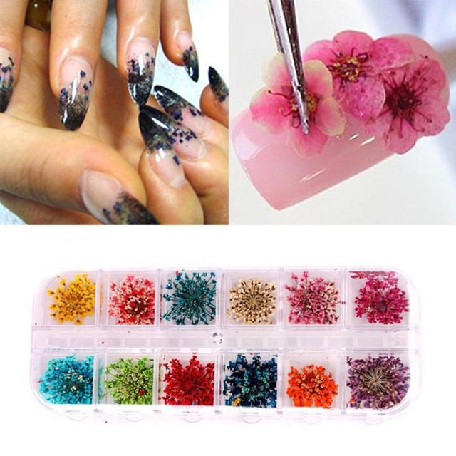 12 Colors Real Nail Dried Flowers Nail Art Decoration DIY Tips with Case Small Flowers Nails Tools Rhinestones Decorations