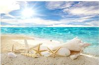 Blue ocean beach beach shells starfish TV background wall