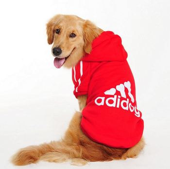 VILEAD Big Dogs Sportswear 1
