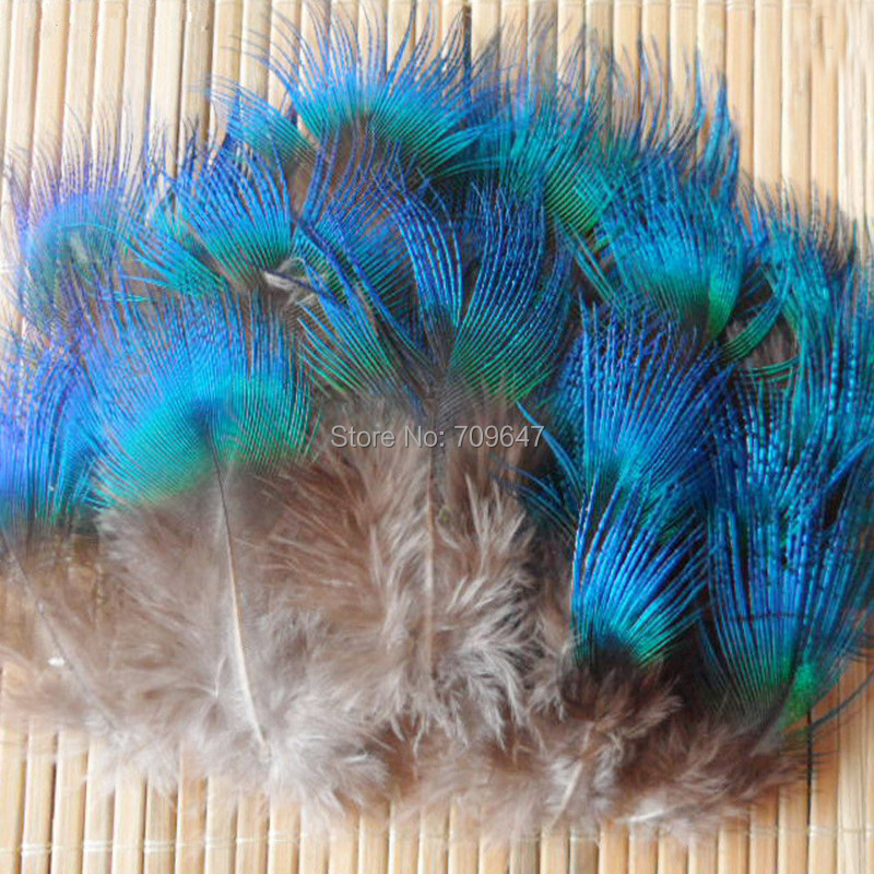 20 Blue Green Mini Peacock Body Plumage Feathers US Seller
