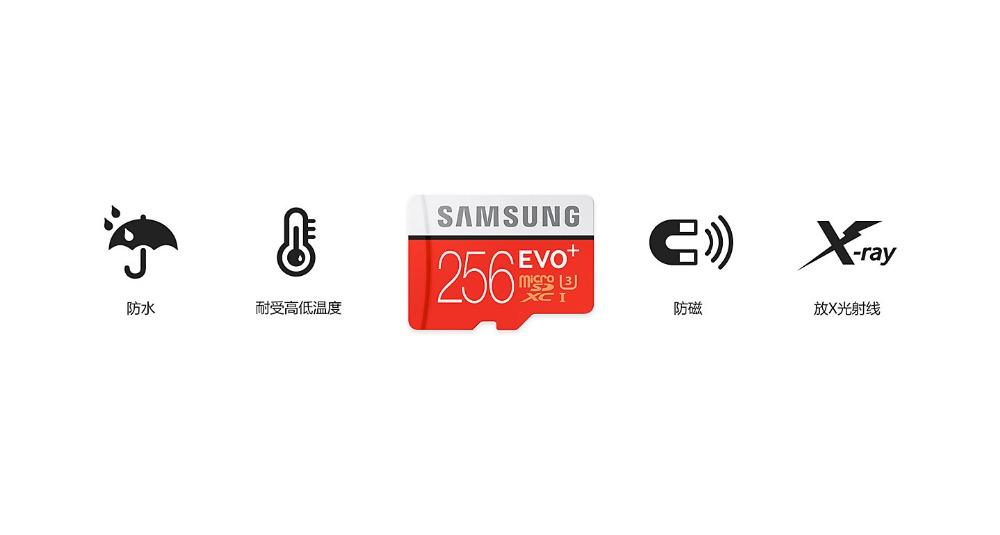 cn-feature-evo-plus-microsd-card-256gb-60775594