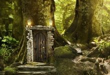 Laeacco Forest Backdrops Dreamy Grass Old Tree House Child Portrait Scenic Photography Backgrounds Photocall Photo Studio