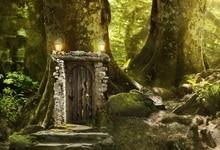цена Laeacco Forest Backdrops Dreamy Dreamy Grass Old Tree House Child Portrait Scenic Photography Backgrounds Photocall Photo Studio онлайн в 2017 году