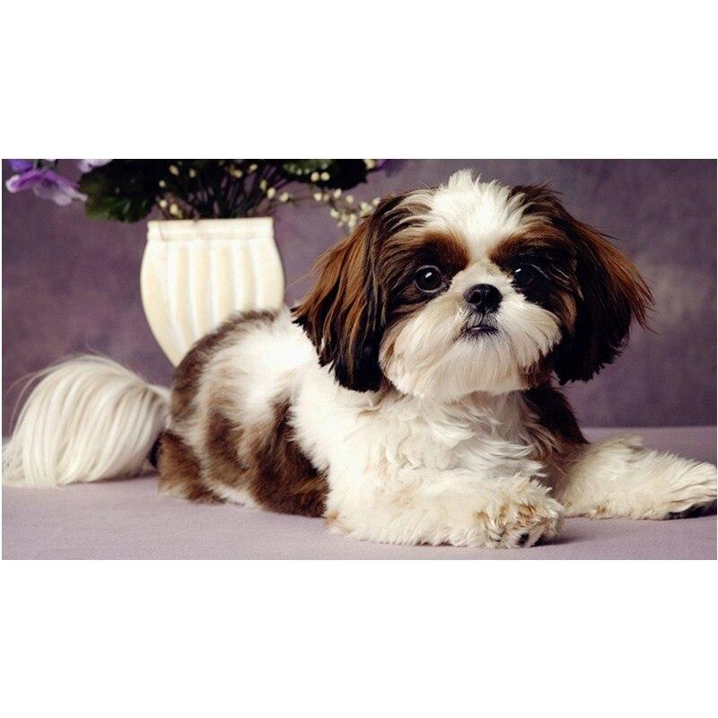 ▽Nueva llegada Bordado Rusia lindo perro DIY diamante pinturas ...