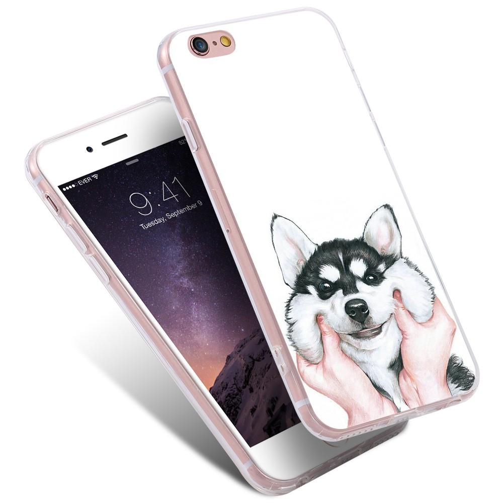 dog case  (8)