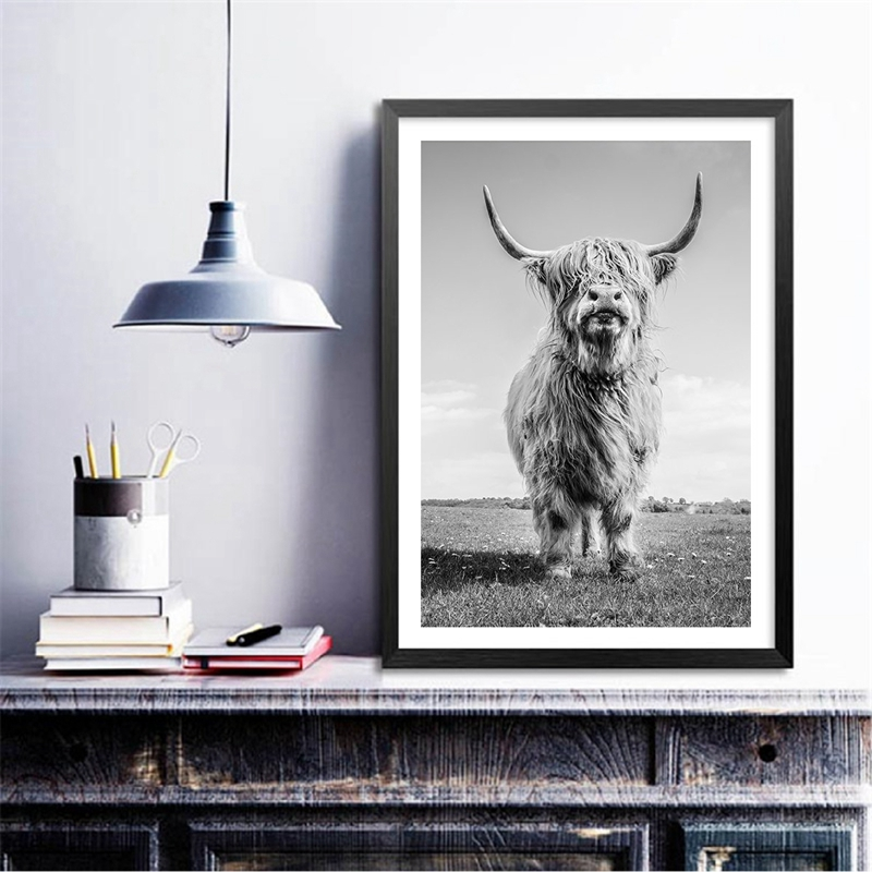 Highland Cow Poster Canvas Prints Home Decor
