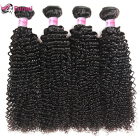 Funmi Curly Hair Bundles Human Hair Extensions 1/3/4 Bundles Deal 100% Unprocessed Virgin Hair Malaysian Hair Bundles 8 28 Inch