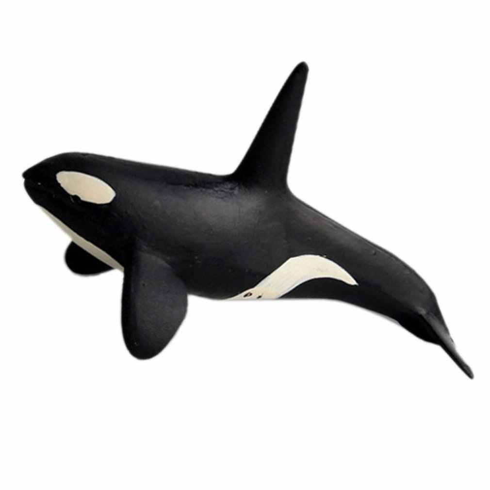Crianças Modelo de Simulação da Vida Marinha Underwater World Oco Branco Tubarão Gigante Tubarão Dente Brinquedo Ornamentos Presente de Aniversário para Crianças