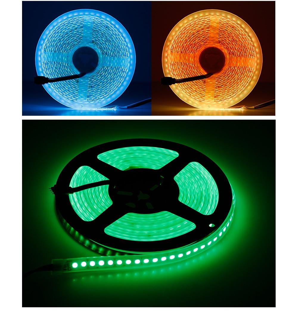 LED Strip 5050 (19)
