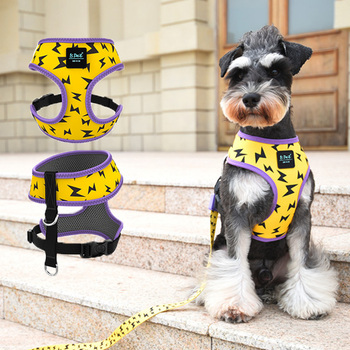 Lightning Bolt Small Dog Harness