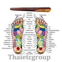 [Fly Eagle] 1 X reflexología salud tailandés pie masaje madera palo herramienta envío gratis con tabla