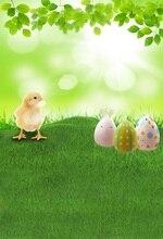 Laeacco Easter Egg Coelho Verde Prado Backdrops Para Estúdio de Fotografia Fotografia Fundos Fotográficos Personalizados
