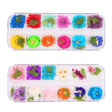 12 Pcs/box Dried Flowers Epoxy Sheet UV Decoration Resin Silicone Mold DIY Jewelry Filler Beauty Nail Accessory