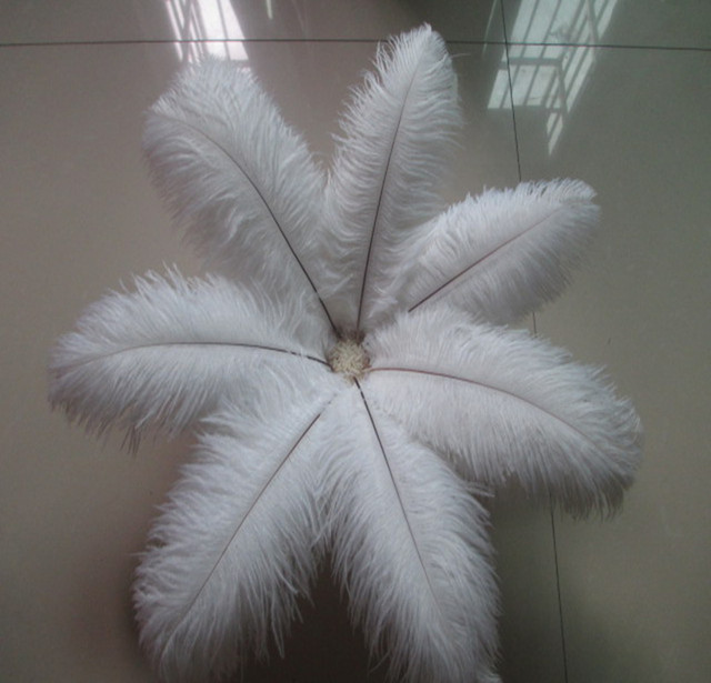 US $9 99 |Beautiful white ostrich feather 50 pcs feather length 8 10 inches  / 20 25 cm Wedding Decoration Free Shipping-in Feather from Home & Garden