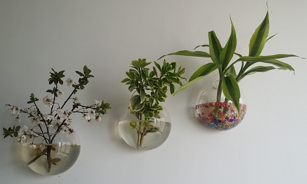 Hanging Wall glass planter vase,glass fish tank indoor wall decor ...