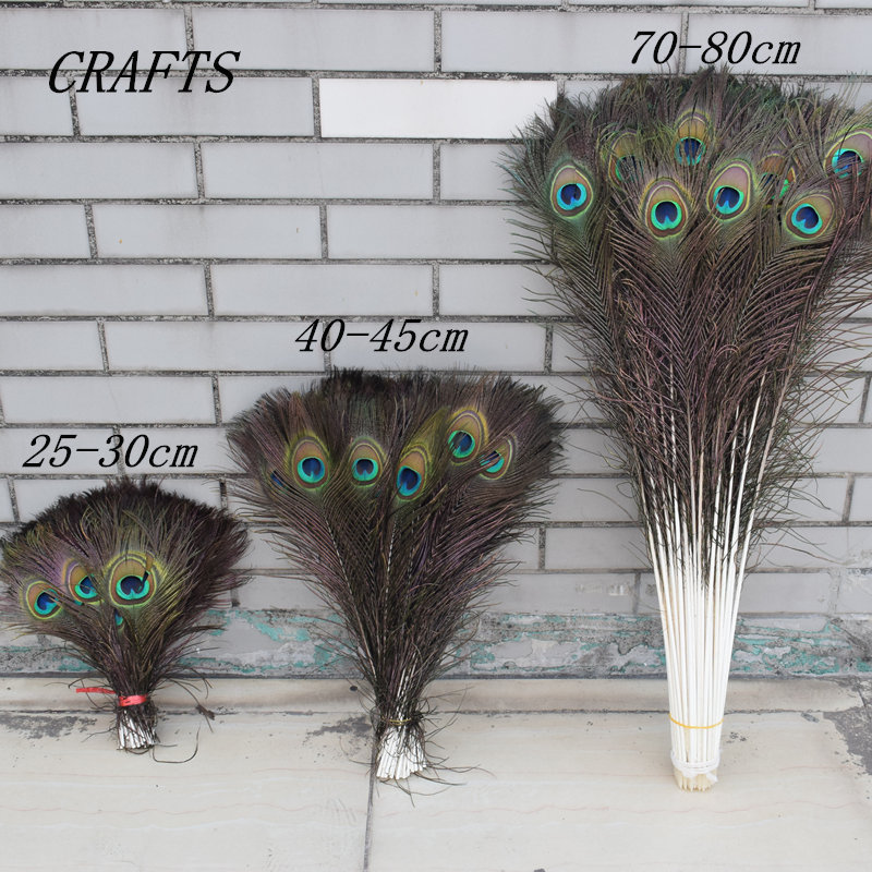 "25 Pcs BLEACHED PEACOCK TAILS TURQUOISE Feathers 10-12/"" Bridal//Halloween//Hats"