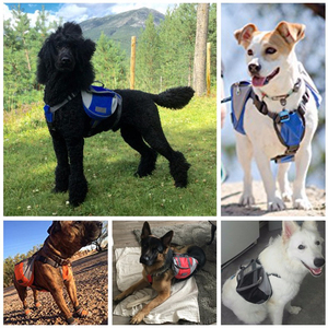 Image 3 - [TAILUP] Dog Harness K9 for Large Dogs Harness Pet Vest Outdoor Puppy Small Dog Leads Accessories Carrier Backpack py0025