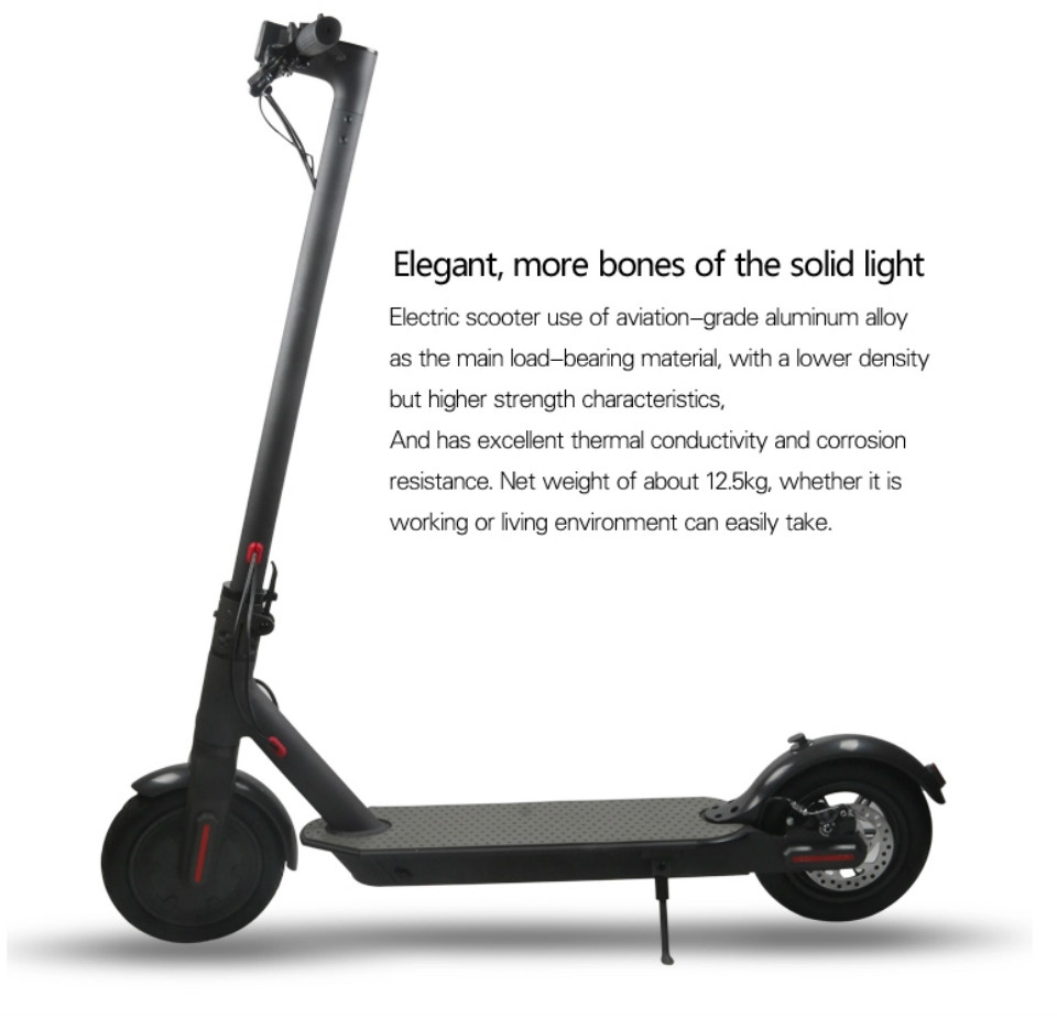 Folding Electric Scooter 10