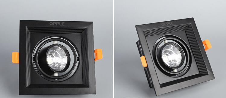 1 stücke 10 watt 20 watt 30 watt 110 v 220 v led dimmbar decke - Innenbeleuchtung - Foto 5