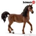 5 шт./лот Оптовая Новый Животных Фигурку Игрушки Арабский Жеребец Лошадь 13.5 см Высокая ПВХ Рисунок Модель Игрушки