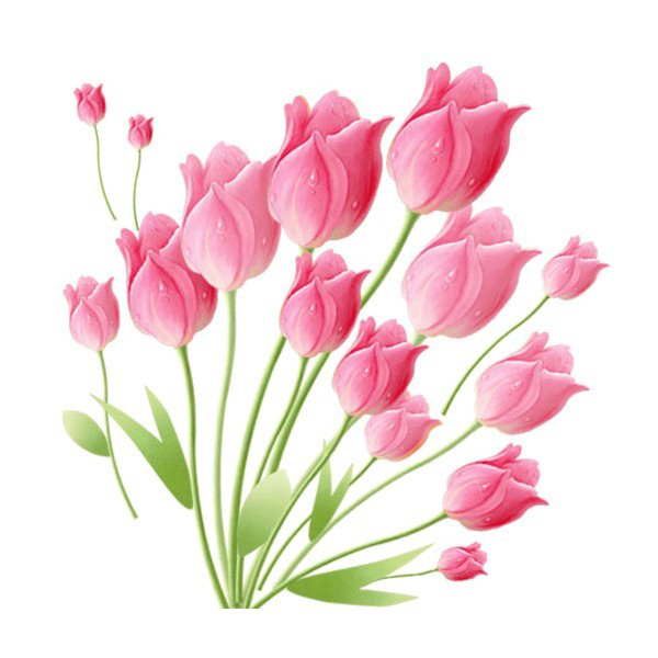 1 set 2428 inch removable pvc decals pink tulip decorative flowers wallpaper for bedroom - Decorative Flowers
