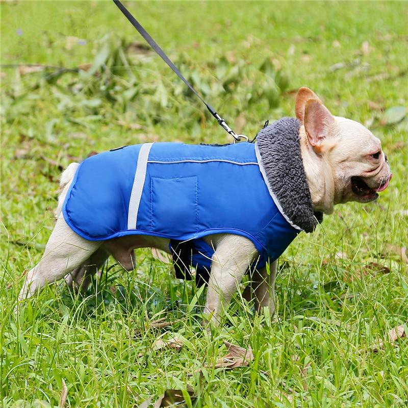 Dog Clothes (28)