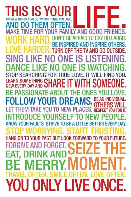 f3779 16 x24 this is your life inspiration college room poster print
