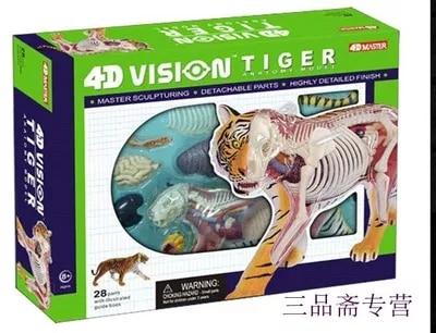 4D MASTER Tiger dissection assembly model free shopping robin hood 4d xxray master mighty jaxx jason freeny anatomy cartoon ornament
