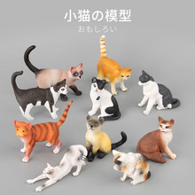 Mini cat toy Toys & hobbies anime figure animals action toys set educational for children boys christmas gift