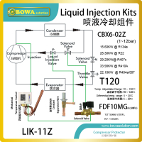 General Liquid Injection Kits Can Replace Y1037 Y1210 Or Y1244 Temperature Responsive Expansion Valve TREV Well