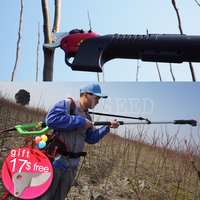 Lithium Battery Vineyard And Orchard Best Pole Pruners For Russia Ukraine South America And Africa Buyers