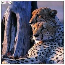 Mooncresin 5d diy Алмазная вышивка крестиком два леопарда взгляд