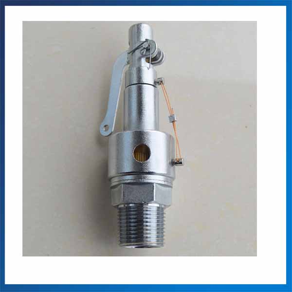 DN15 SS304 Boiler Sanitary Safe Valve 0.25MPA Sterilization Relief Valve dn15 automatic bypass valve for wall mounted boiler system