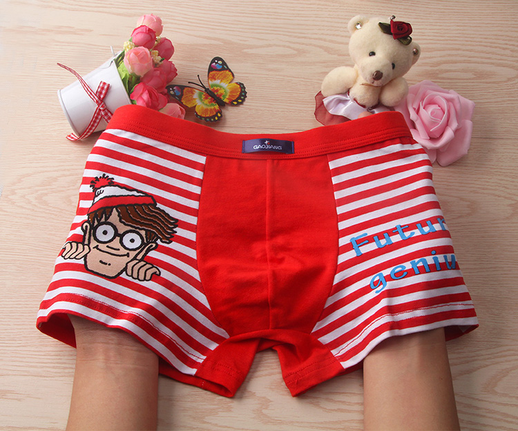 2019 New 2 Pcs/lot Bamboo Fiber Underpants Comfortable Breathable Underwear Kids boys Boxer for 3-11Yrs Boys Briefs QS1004