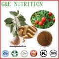 Fuente de la fábrica de Ashwagandha Extract/Withania Somnifera polvo 10:1 cápsula 500 mg x 200 unids
