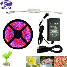 Растение светится полный спектр светодиодные полосы цветок Фито лампа 5 м водонепроницаемый красный синий 4:1 для теплицы гидропоники+ адаптер питания
