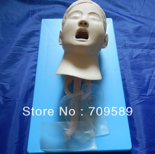 ISO Advanced Child Intubation Training Model, Intubation trainer, Tracheal Intubation Manikin iso economic newborn baby intubation training model intubation trainer