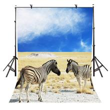 5x7ft Zebra Backdrop Blue Sky Wasteland Nature Photography Background and Studio Props
