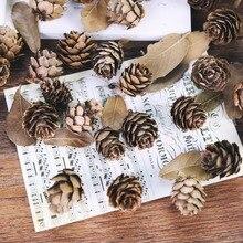 5 stks/partij Natuurlijke Mini Pijnboompitten Ceder Fruit Voor Thuis Bruiloft Kerstboom Decoratie voor Fotografie Accessoires S Props
