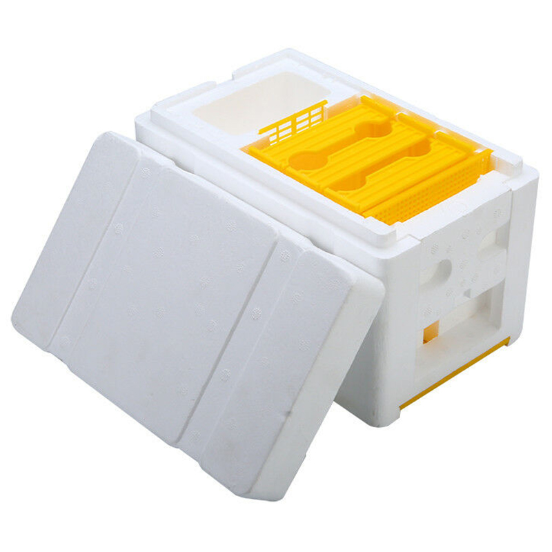 Bee Hive Beekeeping King Box Pollination Box Foam Frames Beekeeping Tool Kit