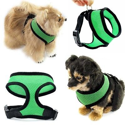 Pet Control Harness for Dog /& Cat Soft Mesh Walk Collar Safety Strap Vest