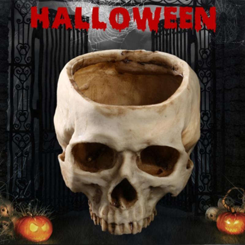 Resina artesanía diente humano cráneo fósil esqueleto enseñanza ...