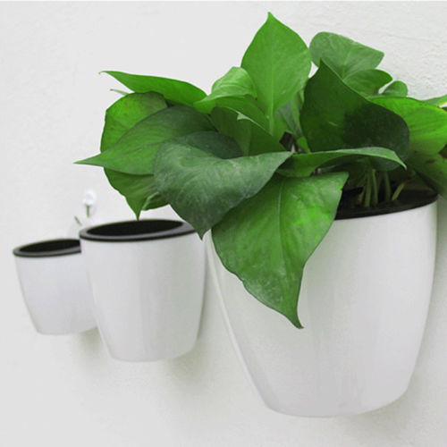 2018 Newest Modern Self-watering Plant Flower Pot Wall Hanging Plastic Planter Home Garden Hanging Baskets Planters White Size L