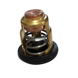 Boat Engine Metal Thermostat E