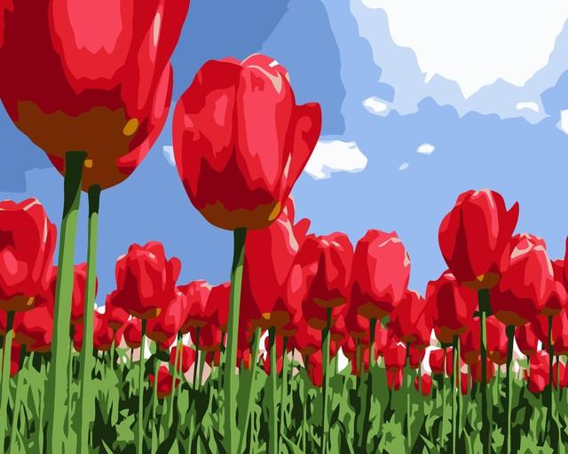 Tulipanes rojos lienzo pinturas de bricolaje pintura al óleo con ...