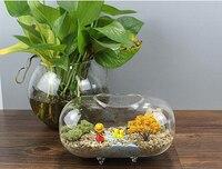 Transparent 18cm Oval Glass Flower Vase Mini Fish Tank Aquarium Plants Terrarium Succulent Bonsai Home Decor