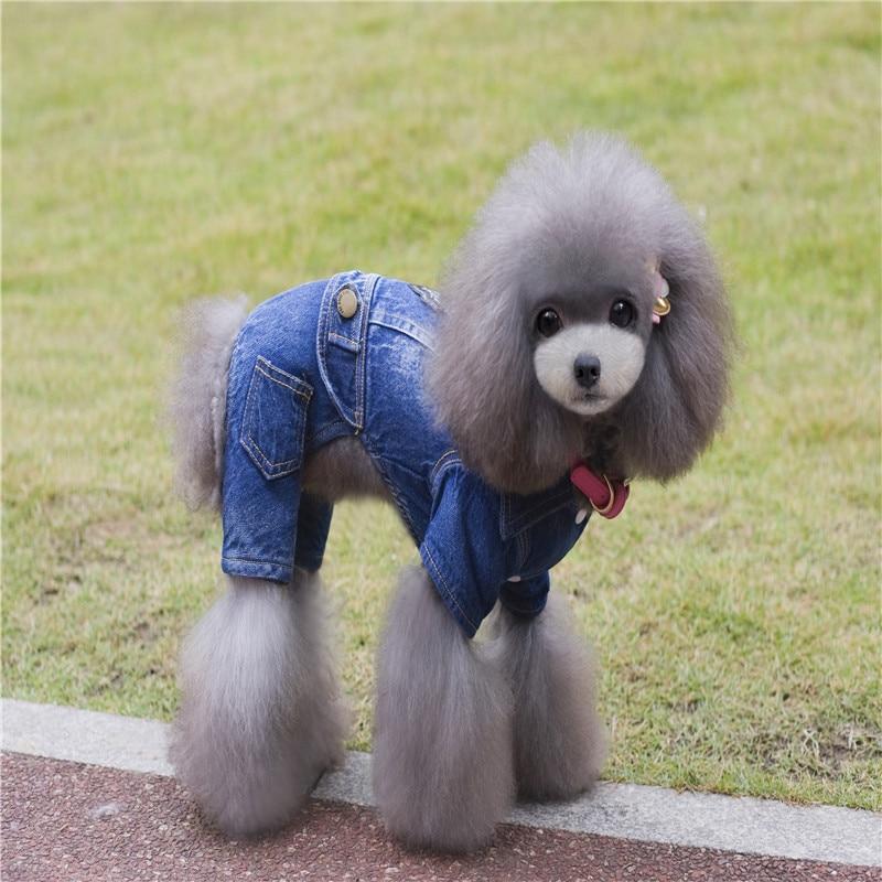 Für Jeansjacke Cowboy Kostüm Mode 59neue In Hund Mantel Kleidung Herbst Winter Freizeit Yorkshire Us9 Jeans Chihuahua Teddy Pet qzMVSpGU