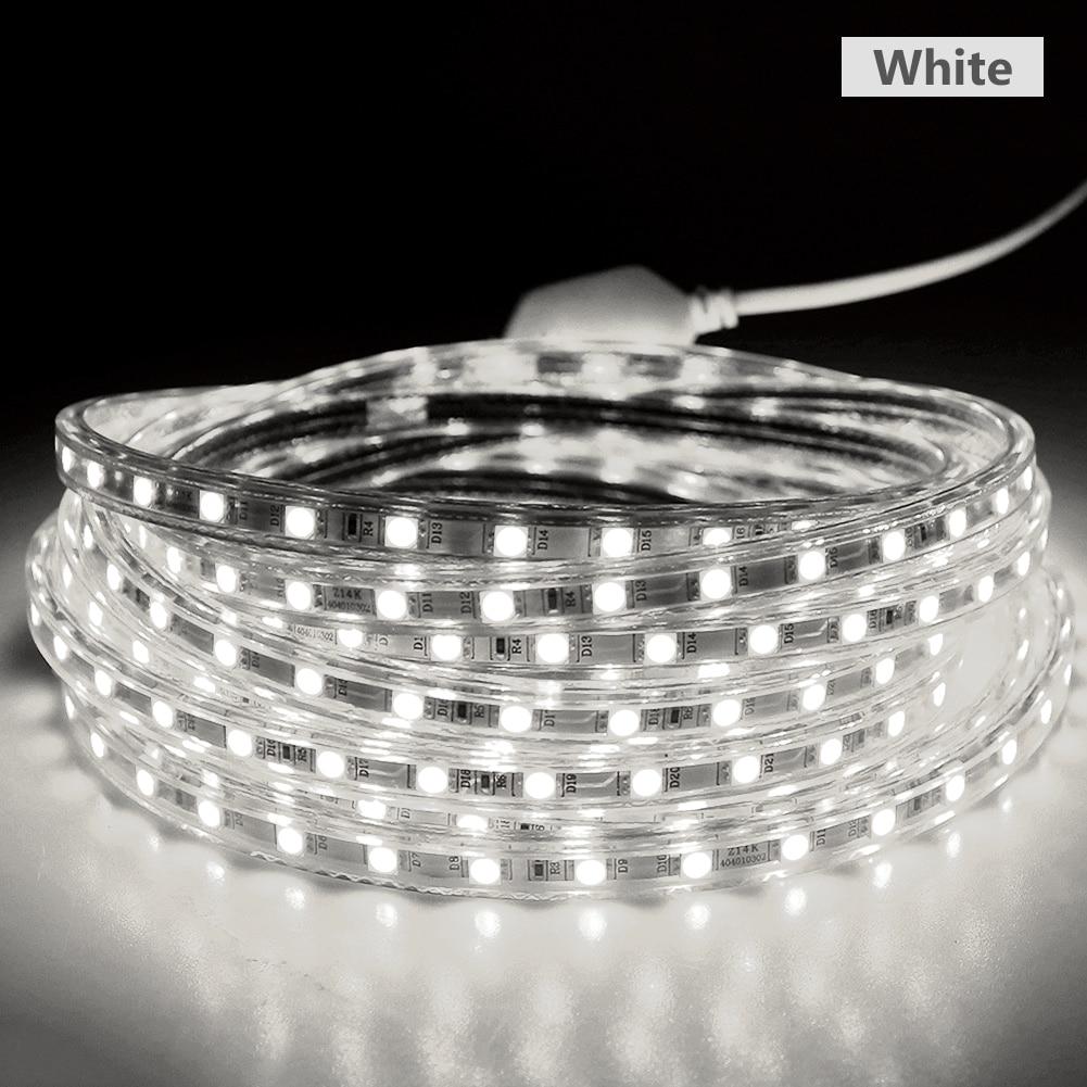 Cheap 220V LED Strip 5050 Waterproof IP67 Rope light Outdoor 1m 2m 3m 4m 5m 6m 7m 9m 10m 15m 20m 25m Warm white+ Power plug 110V